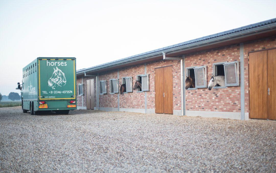 Aantal paarden per vracht
